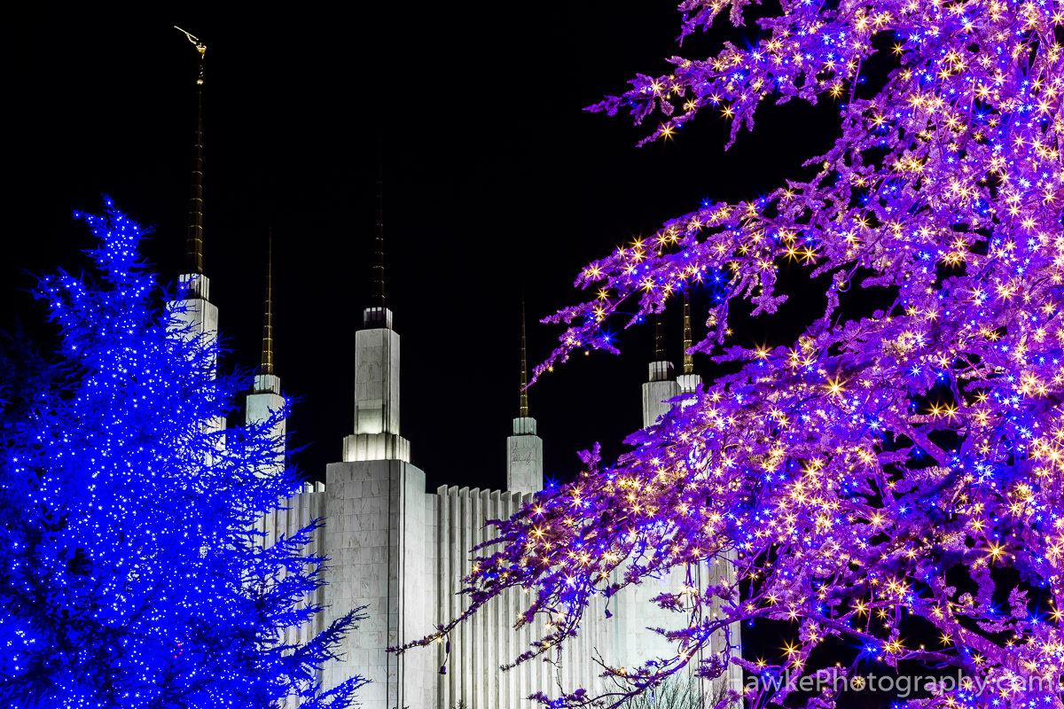 washington dc mormon temple festival of lights 2016 - Dc Christmas Lights
